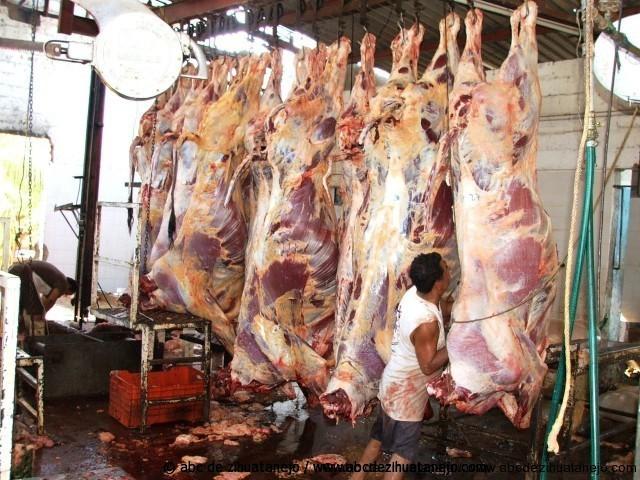 Photo of Libre de clembuterol, carne de res que se consume en Zihuatanejo