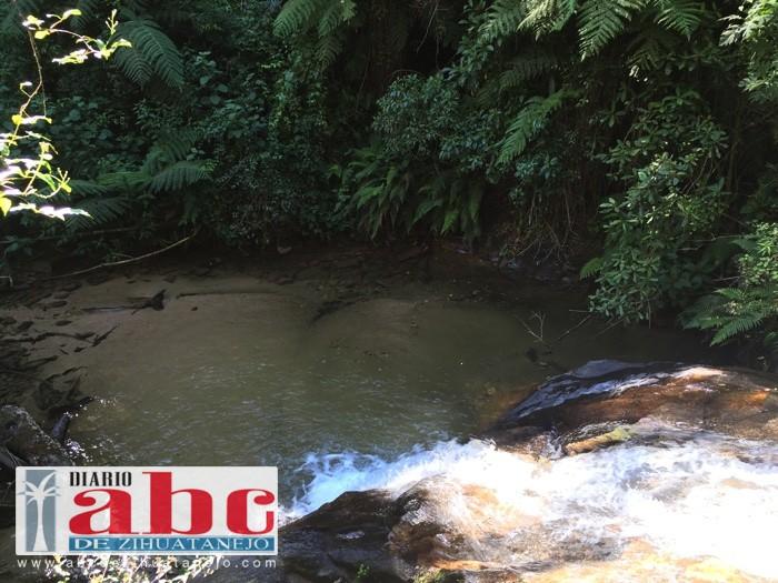 Photo of Cuidan ejidatarios el medio ambiente en Técpan