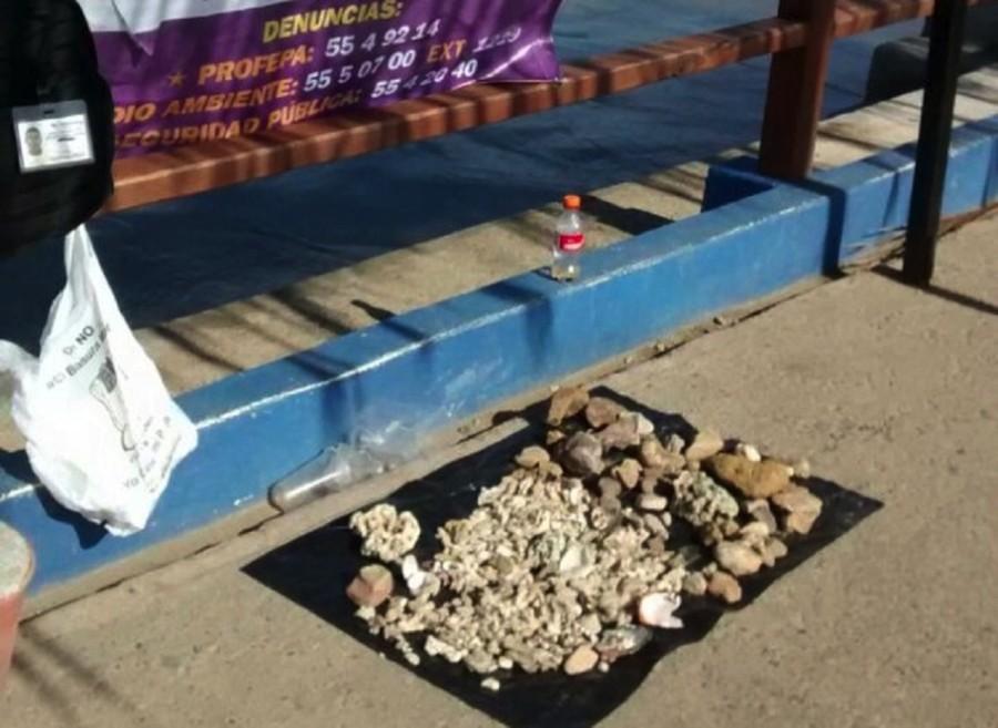 Photo of Ya son 7 los comités de playa que van a proteger el medio ambiente