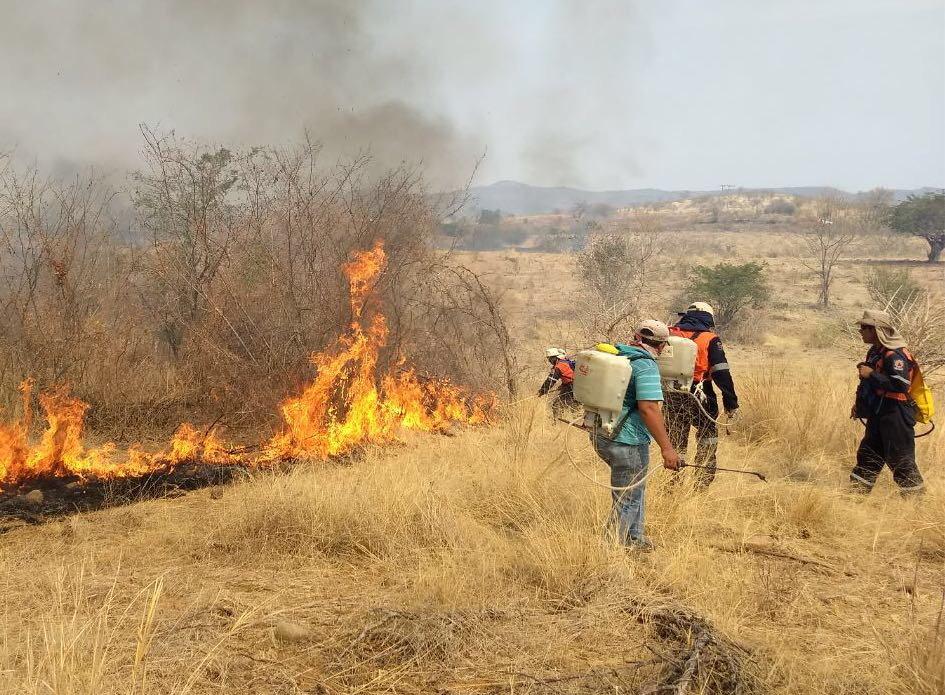 Photo of Registra Guerrero 12 incendios forestales activos, informa Protección Civil en #Guerrero