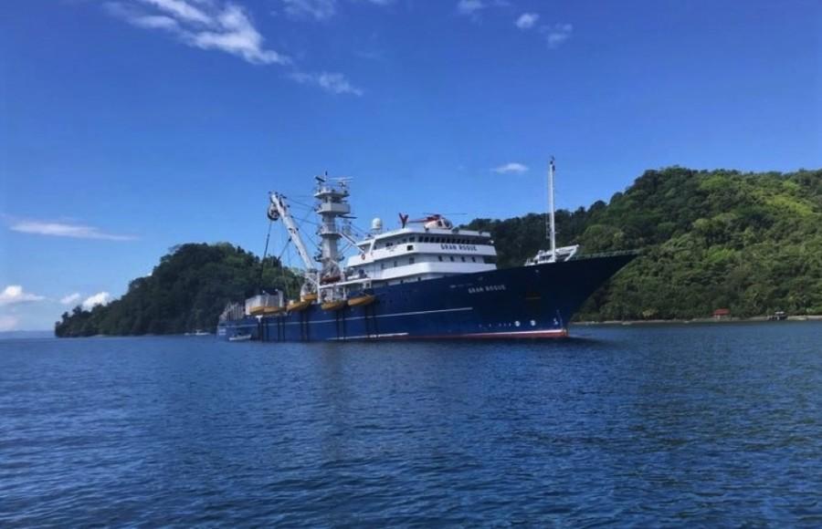Photo of Denuncian matanza de delfines hecha por barco atunero en Tecpan