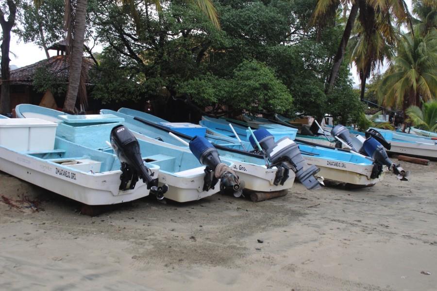pescadores-mejor-preparados--zihuatanejo.jpg