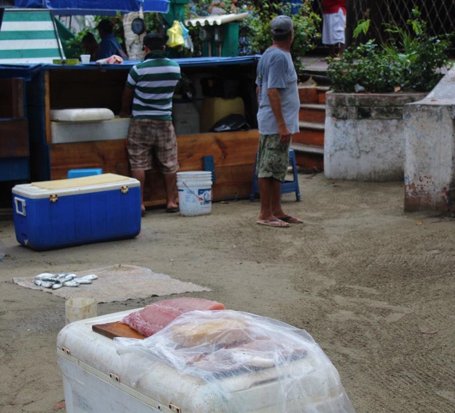 Photo of Necesario que se reparta apoyo económico por mar de fondo a pescadores de Costa Grande